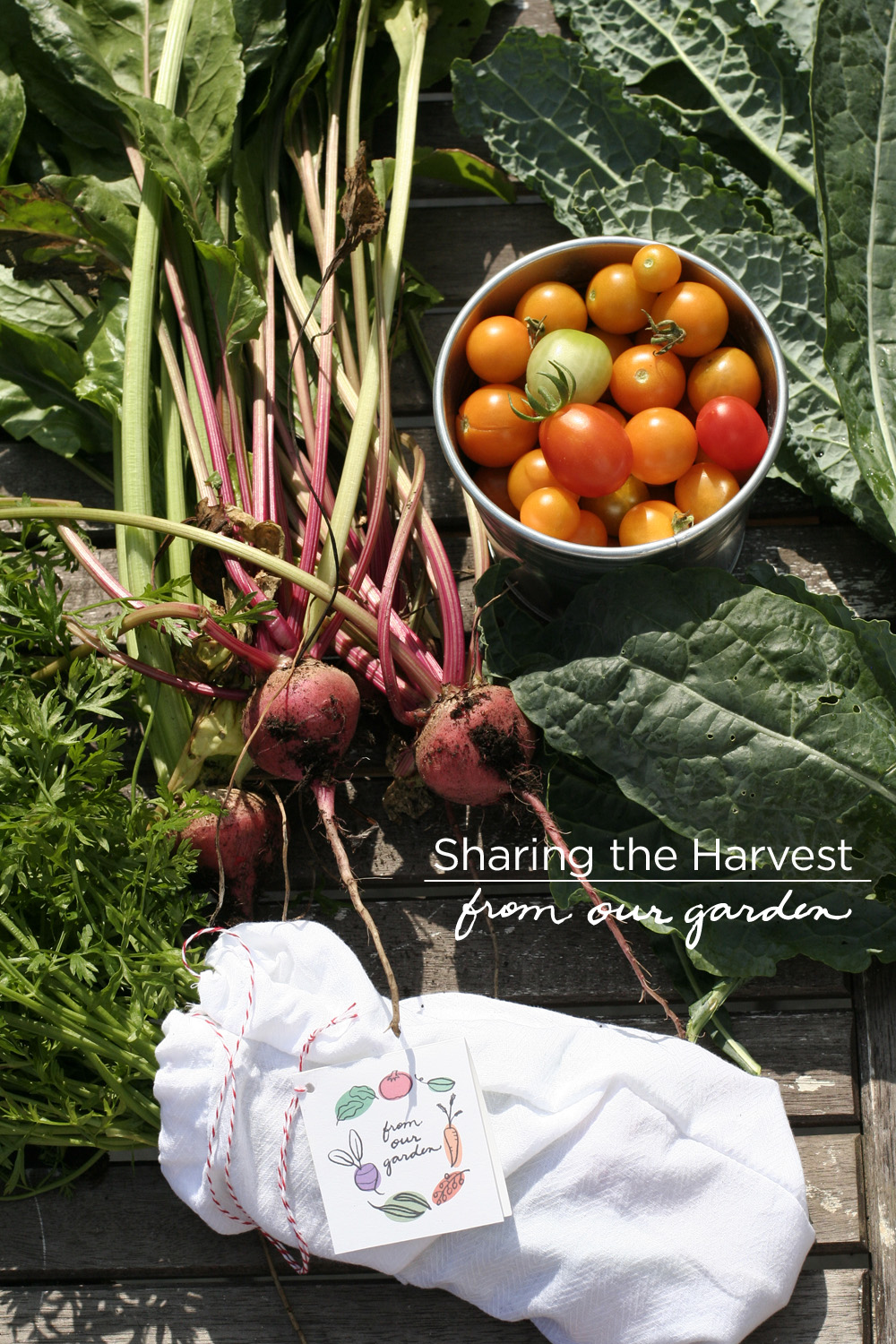 sharing your summer harvest