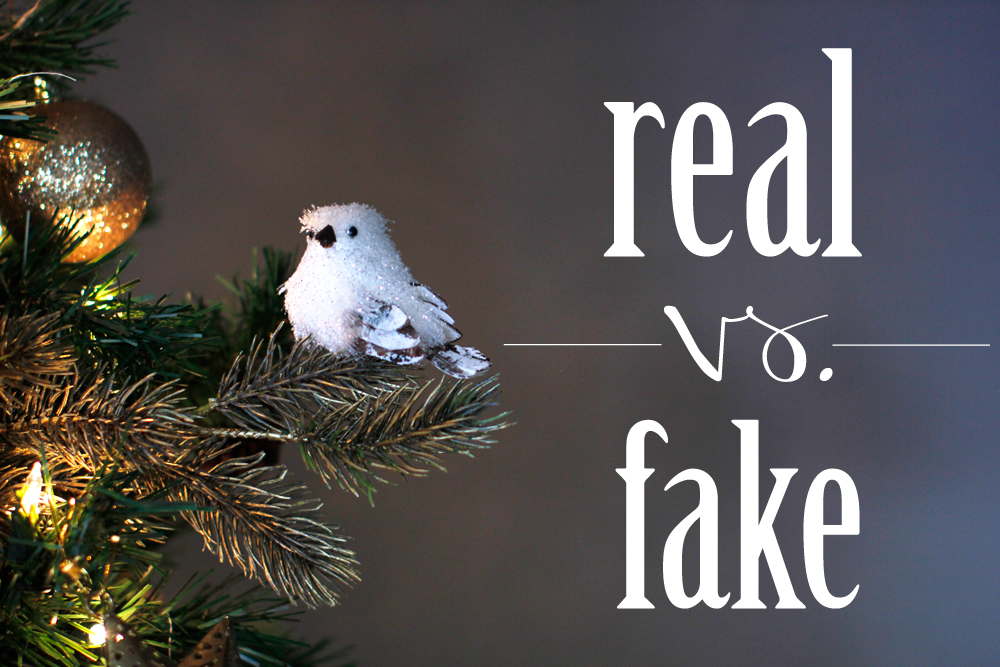 Pros And Cons Of Real And Fake Christmas Trees