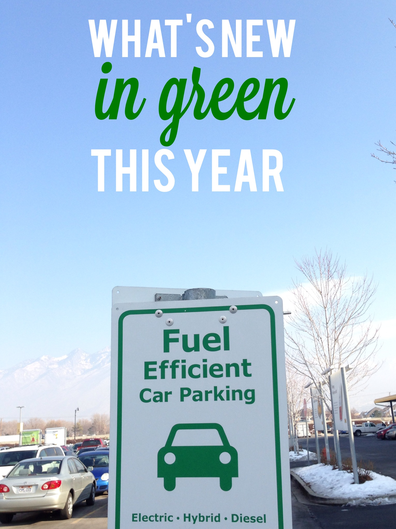 going green in 2014: it has a nice ring to it, right?
