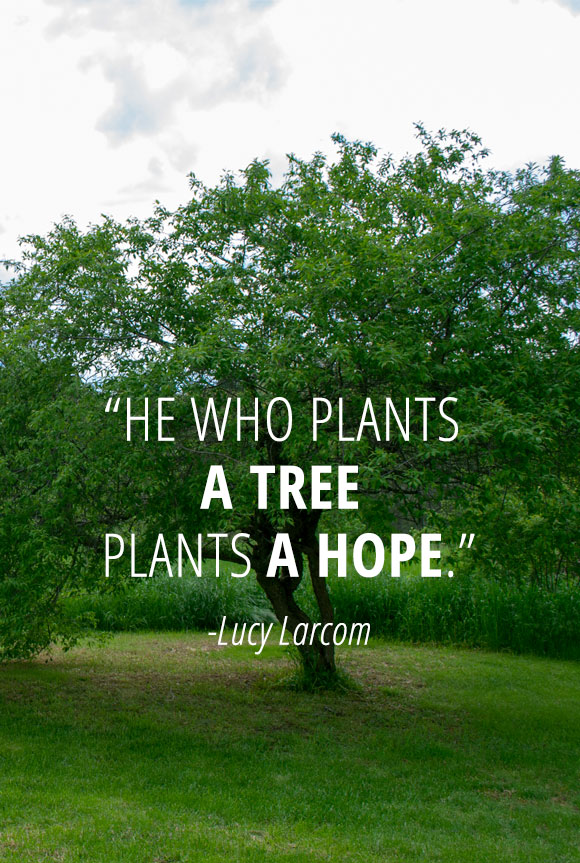 annies home: Arbor Day