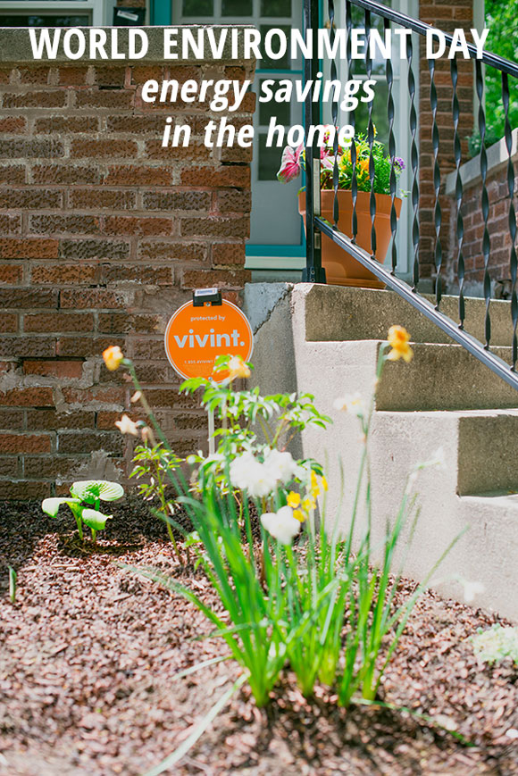 UN World Environment Day: How you can use your vivint system to conserve a little energy