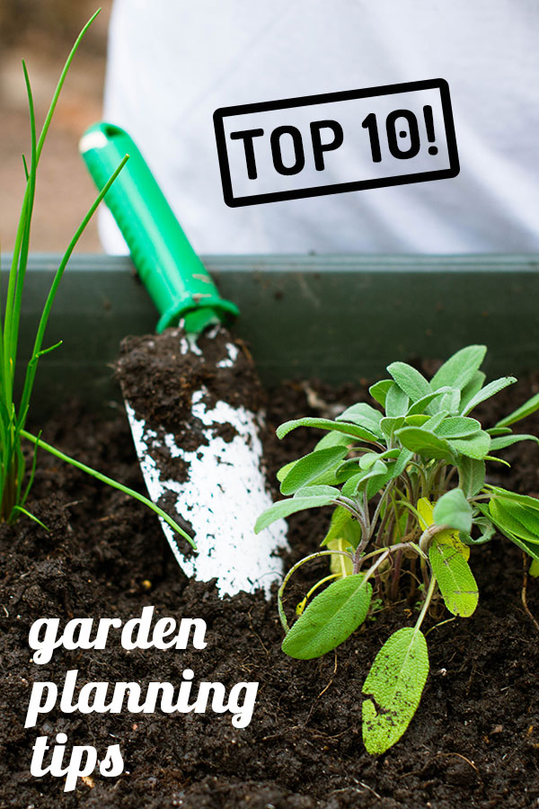 top 10 best tips to remember while planning a garden