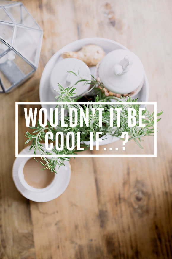 Wouldn't It Be Cool If…?