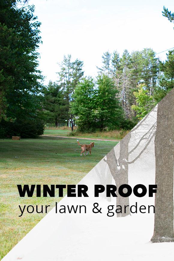 Winter Proof Your Yard & Garden