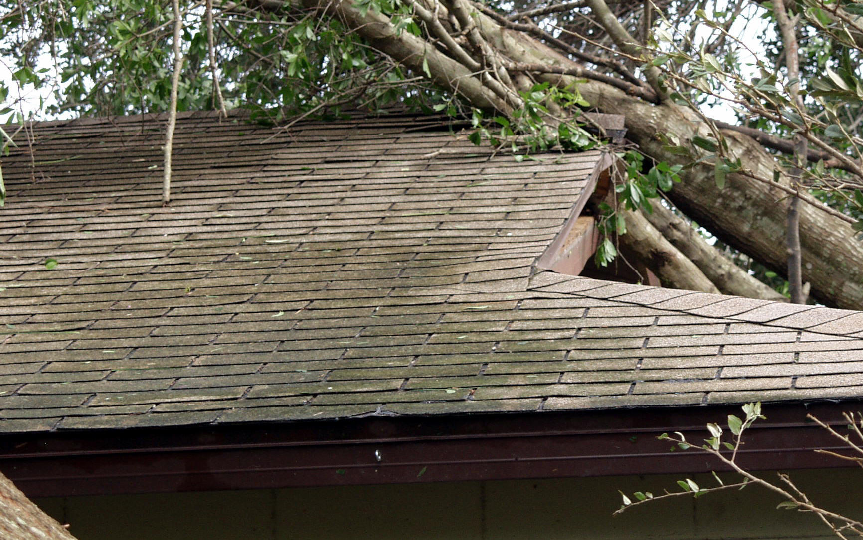 Roof Cleaning Tips And Tricks For Spring