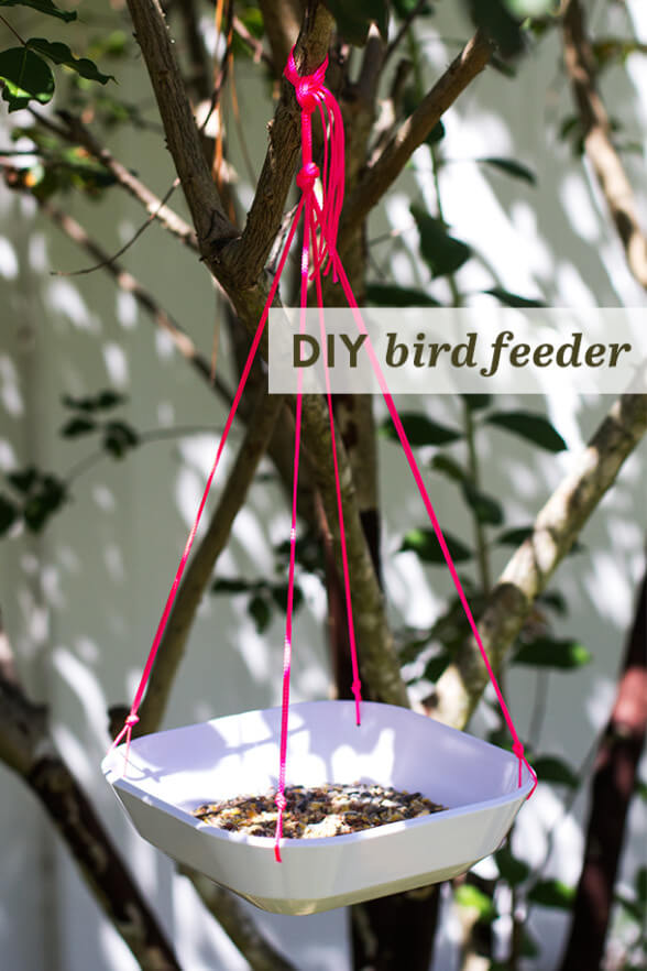 09162013_DIY_Bird_Feeder_1