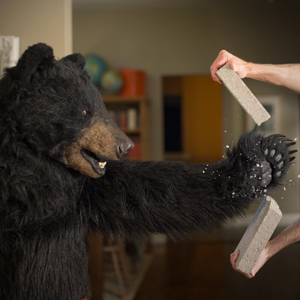 bear suit giveaway