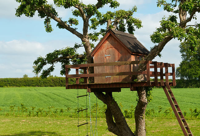Safety Tips for Building a Treehouse